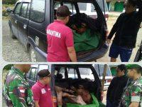 Daging Babi Gelondongan Asal Malaysia di Amankan Satgas TNI