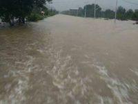 Akibat Banjir di Kecamatan Sukadana, Petani Banyak Merugi