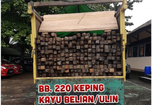 Polisi Tangkap Truk Bawa Kayu Ulin, di Amankan Polres Melawi