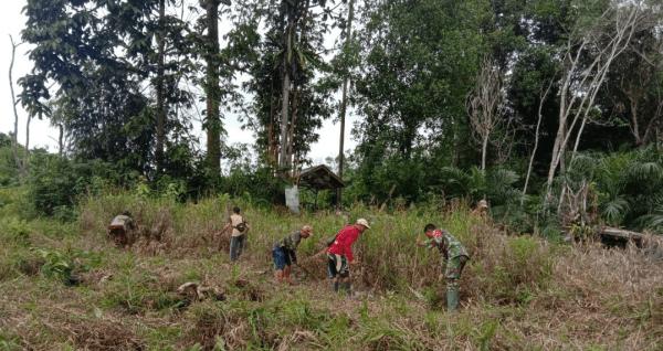 Babinsa Koramil Sungai Kunyit ajak warga kelola lahan tidur menjadi produktif