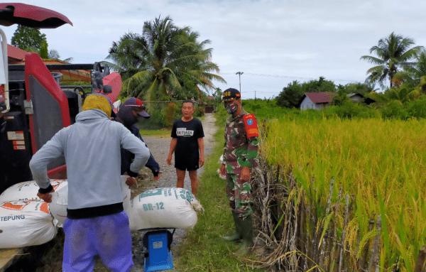 Babinsa Desa Pusaka Dukung Tingkatkan Ketahanan Pangan