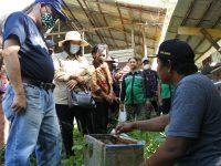 Sekda dan Kepala Bappeda Sintang Tinjau Peternakan Kelulut di Desa Baning Panjang