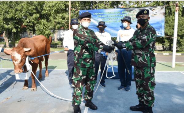 Komandan STTAL Serahkan Hewan Qurban di Sekolah Tinggi Teknologi Angkatan Laut