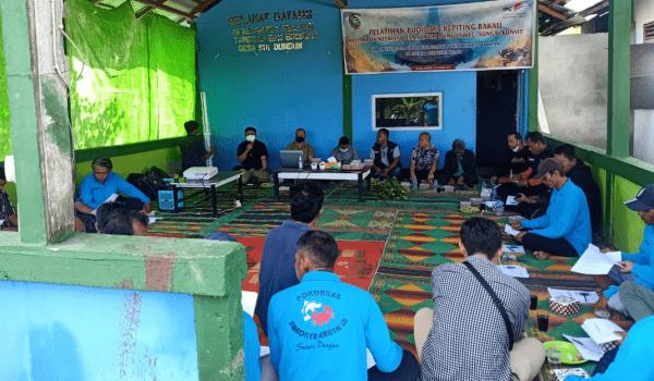 PT. PELINDO II Gelar Pelatihan Budidaya Kepiting Bakau Modern, Bertujuan Lestarikan Hutan Mangrove