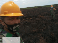Pantauan Satelit BMKG Hotspot Muncul di Wilayah Koramil Jungkat, Padamkan Agar Tidak Meluas