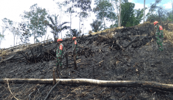 Babinsa Koramil Air Besar Awasi Pembakaran Pembukaan Lahan Pertanian